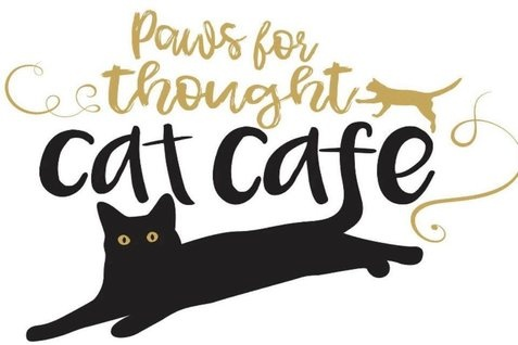 Cat Cafe Romsey
